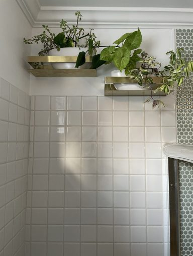 Two brass shelves holding plants, installed above a white-tiled shower