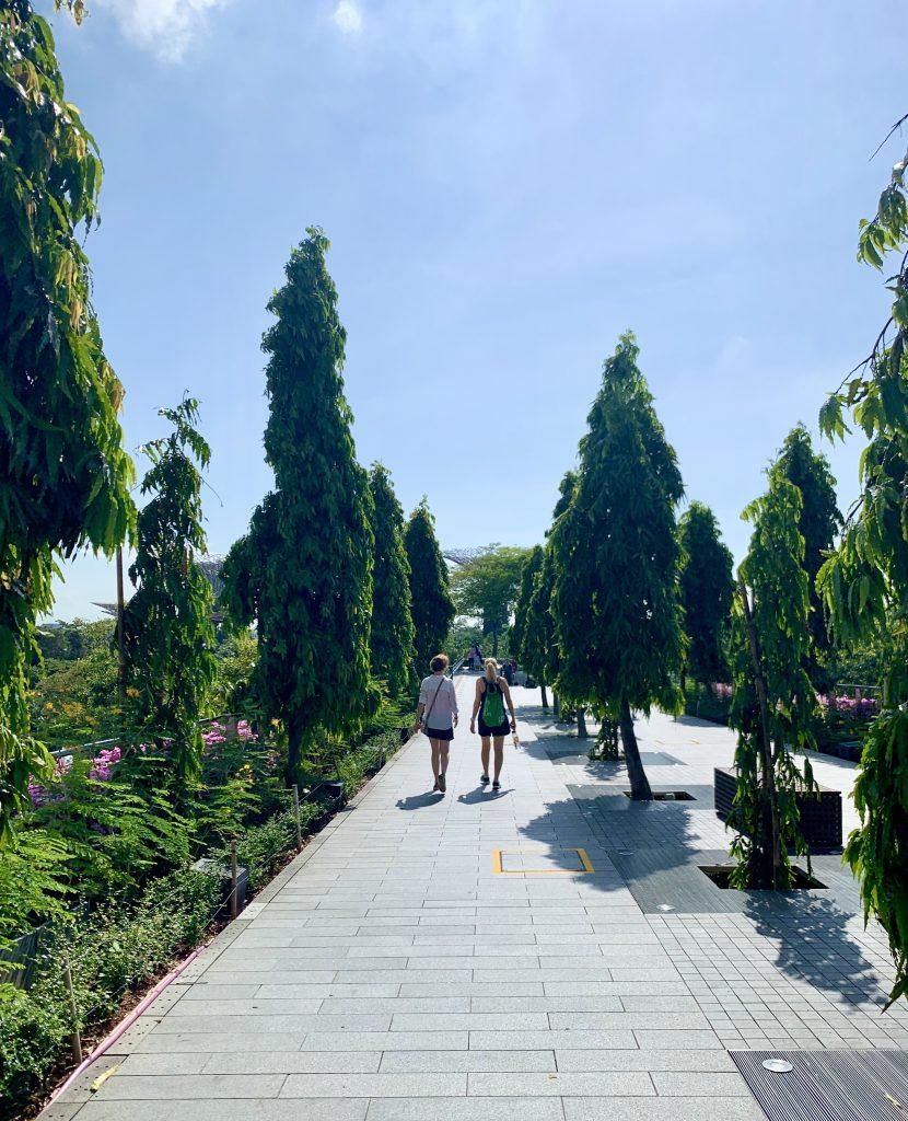 Two women walking on a verdant pathway