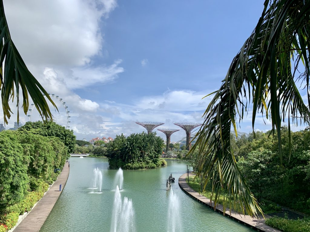 View of water feature in Singapore with SuperTrees and Ferris Wheel in the distance.